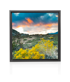 Photographic memory on canvas prints